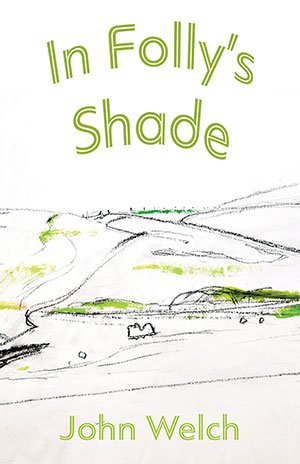 Cover of In Folly's Shade